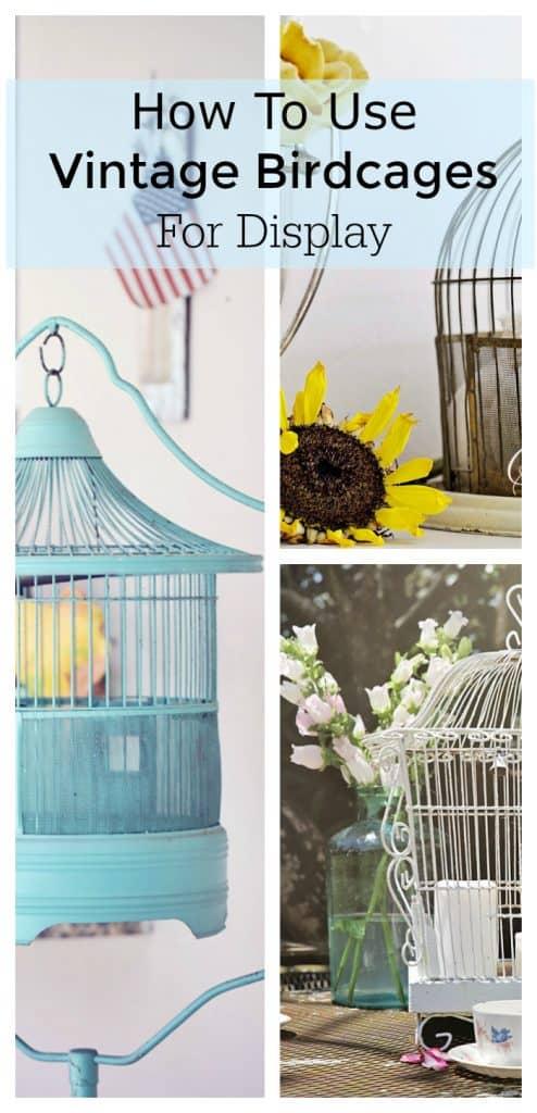 vintage birdcage display ideas