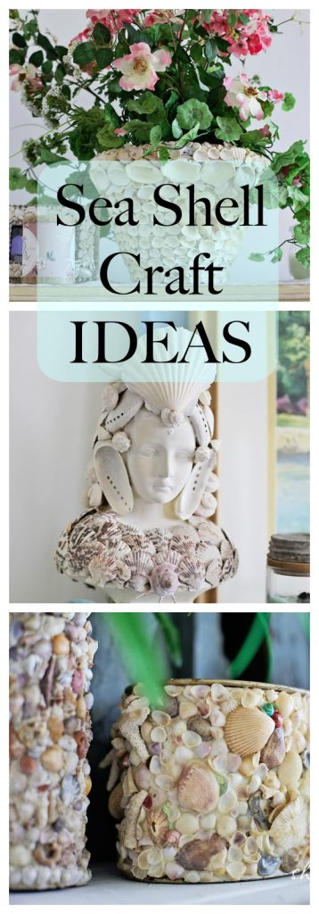 Seashell craft ideas to try