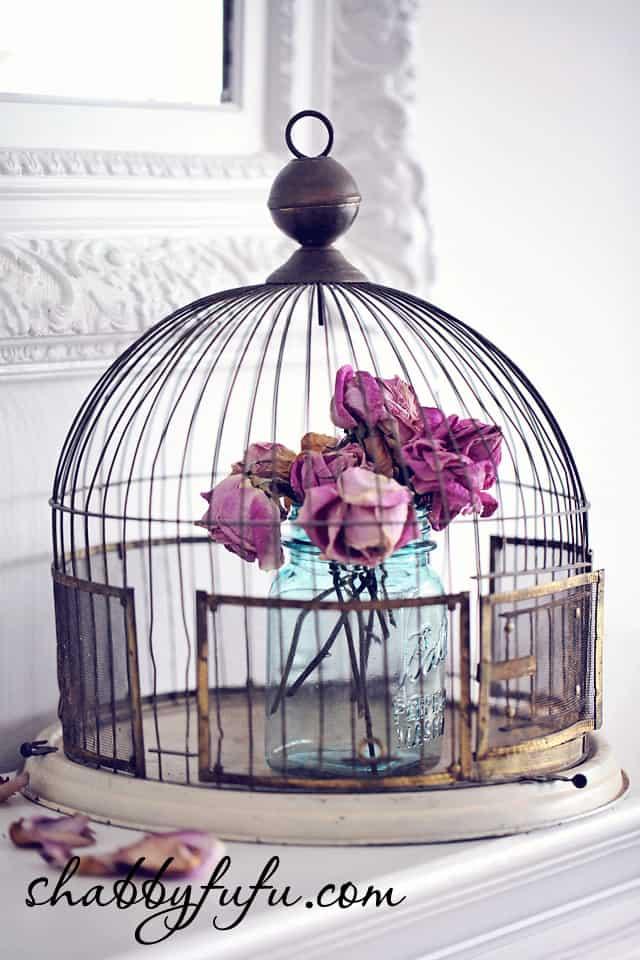 vintage birdcage displays