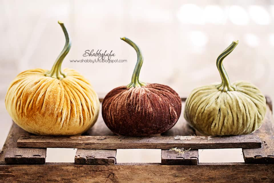 fall vignettes aren't complete without some pumpkins! These small velvet pumpkins add a soft fall touch to this scene.