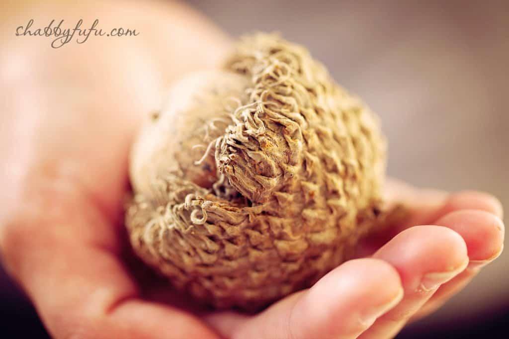 Thanksgiving Beach House decor - brown woven acorn ornament