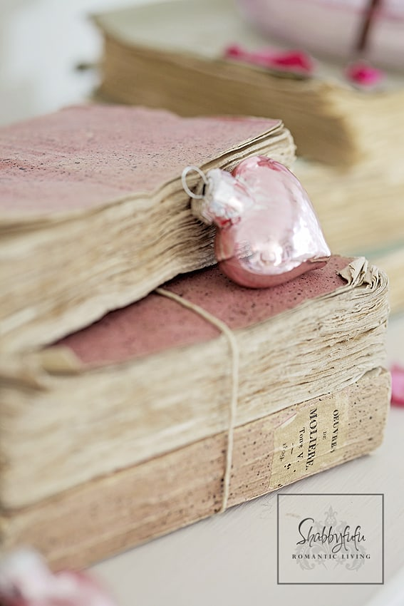 vintage french books pink