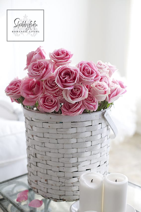 pink roses in a vintage bucket