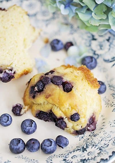 Healthy Blueberries…Breakfast and Snacking