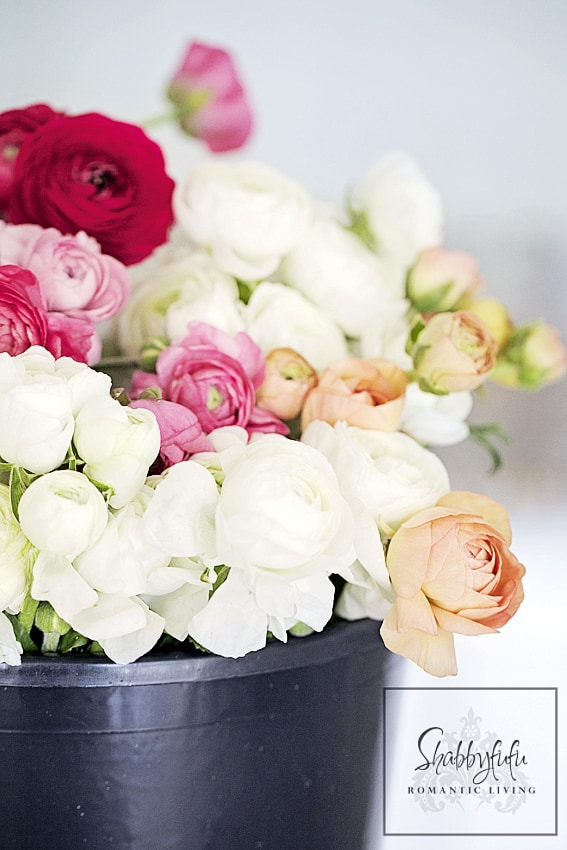 Creative DIY Flower Pot Idea pink white red ranunculus