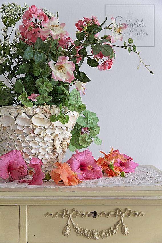 spring hibiscus flowers