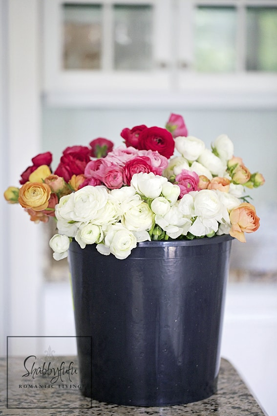 Creative DIY Flower Pot Idea