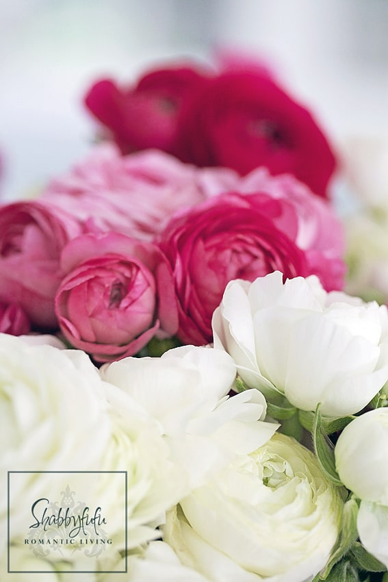 Creative DIY Flower Pot Idea pink ranunculus in arrangement