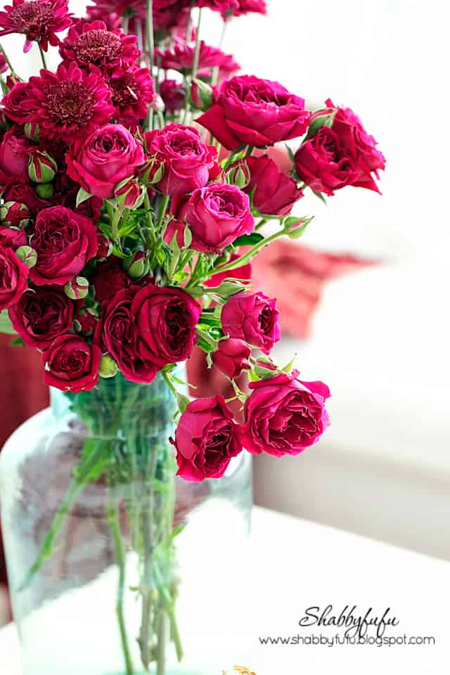richly colored roses