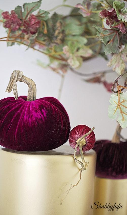 plum velvet pumpkins