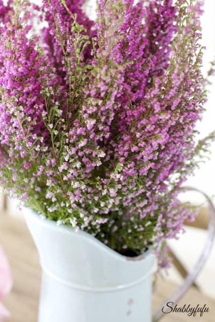 purple heather homegoods pitcher