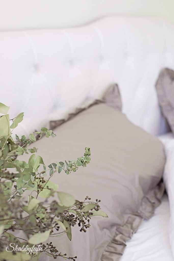 eucalyptus in a bedroom