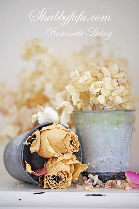 dried-hydrangeas-roses