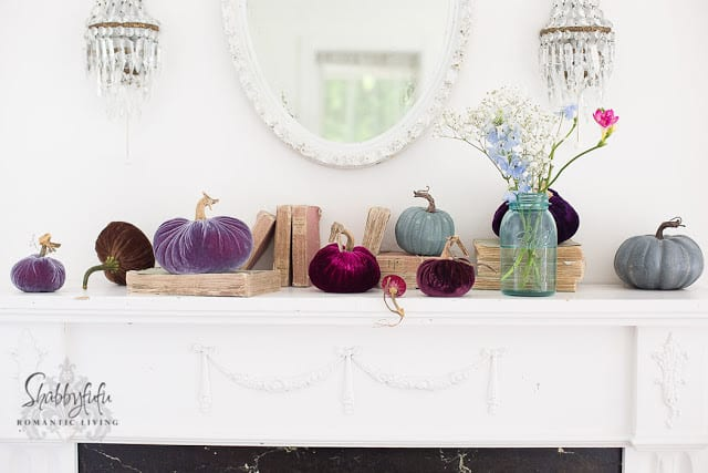velvet pumpkins with real stems