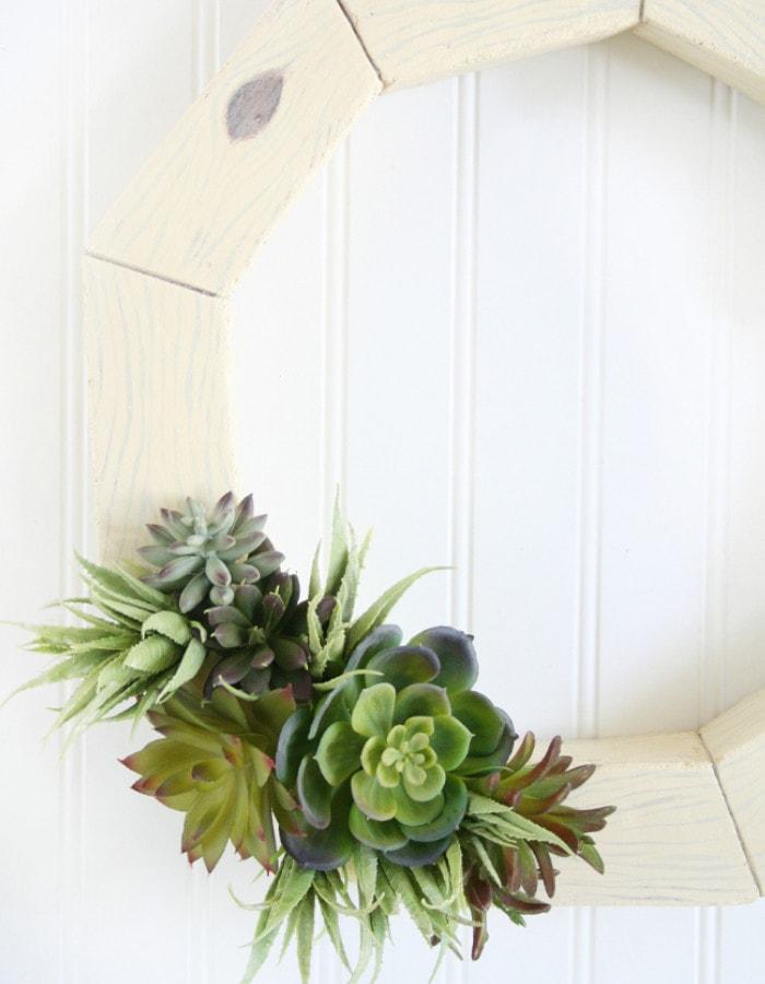 succulent planter arrangements on a frame