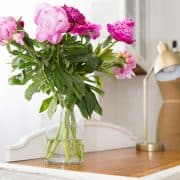 How To Force Peonies To Open And Bloom Quickly