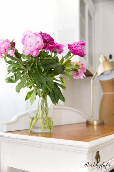 How To Get Peonies To Open And Bloom Quickly