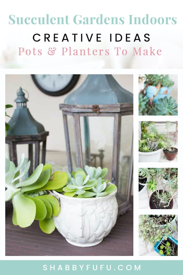 succulent planters to make