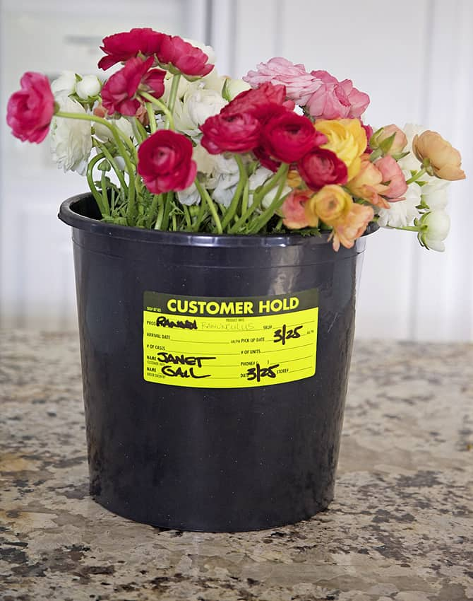 transform a flower bucket in 5 minutes