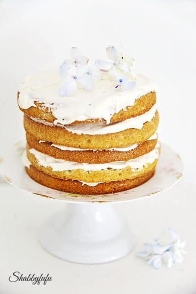 20 Easy To Make Spring Cake Recipes