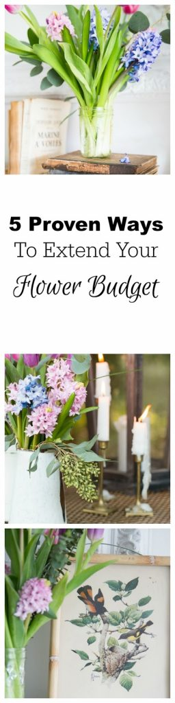 5 Proven Ways To Extend Your Flower Budget