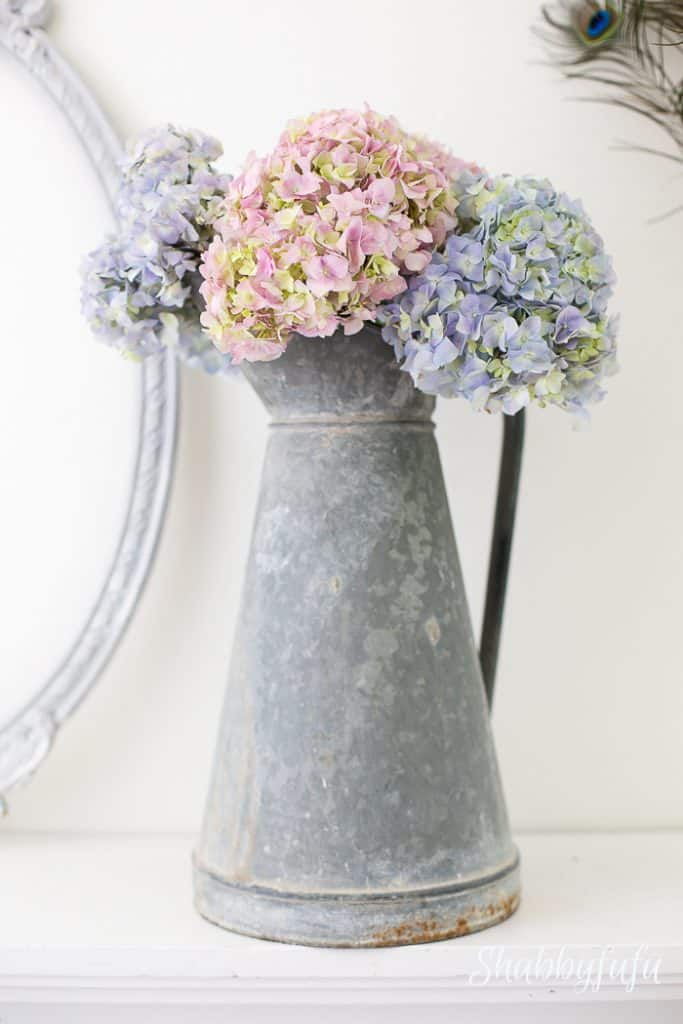 french zinc pitcher hydrangeas in romantic style home decorating