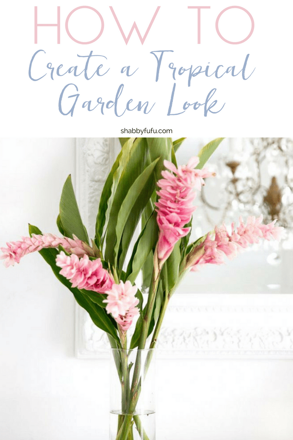 How to design a tropical garden look inside your home with plants for a boho style setting