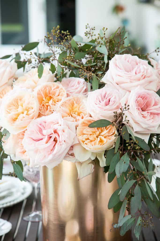 david-austin-roses-peach-pink