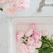 5 Amazing Instagram Accounts That Inspire- Flowers