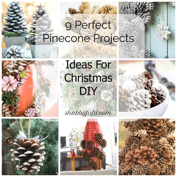 ideas-for-christmas-pinecones