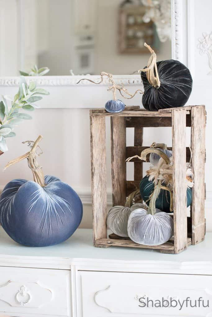 velvet pumpkin display