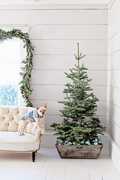 3 Hottest Christmas Decorating Trends To Try