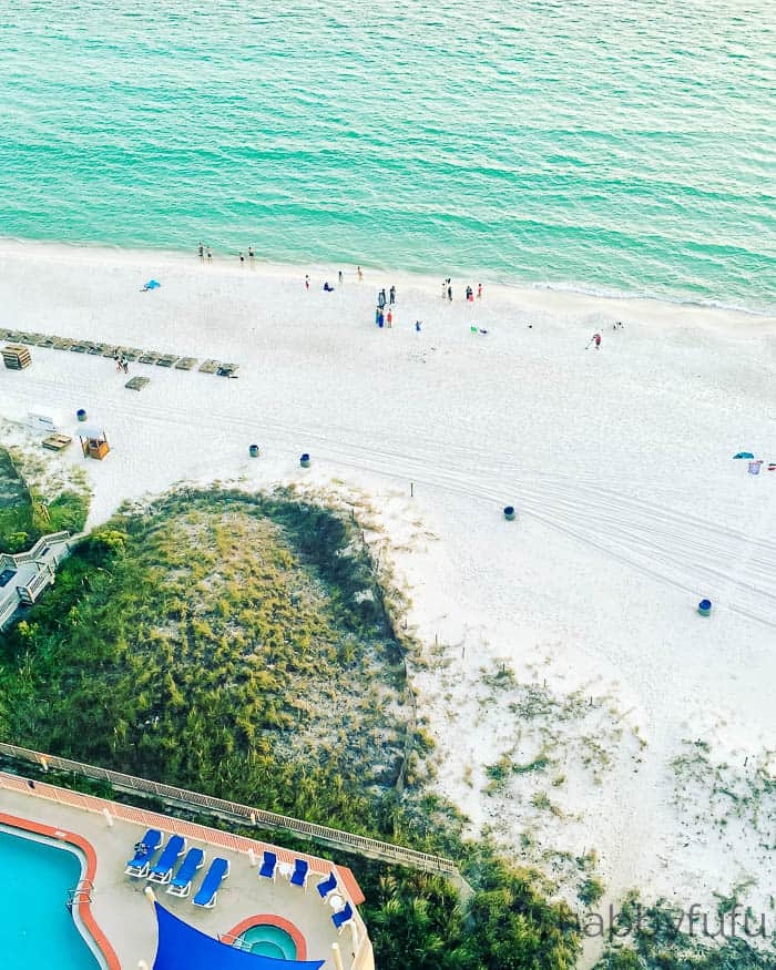 beach-wedding-views