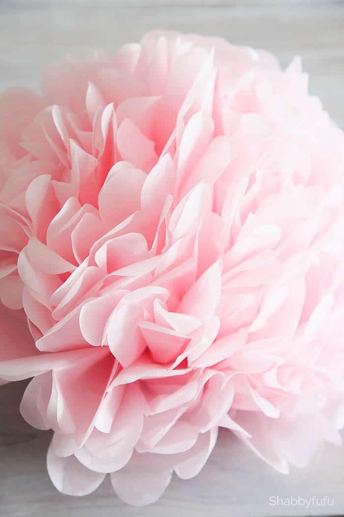 blush-pink-paper-pom-pom-flower