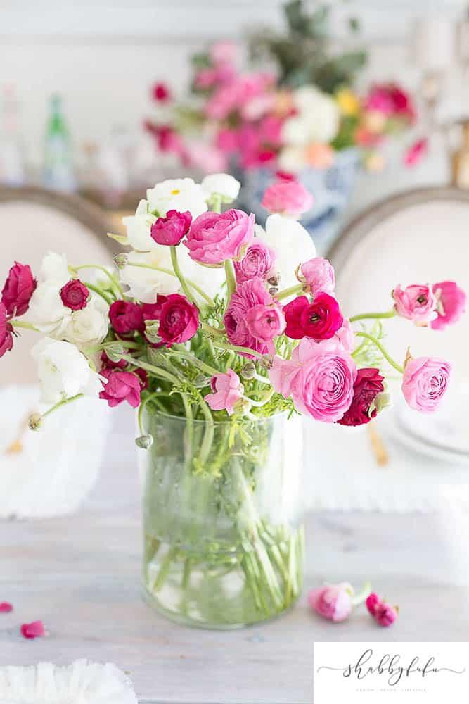 ranunculus spring pink flowers