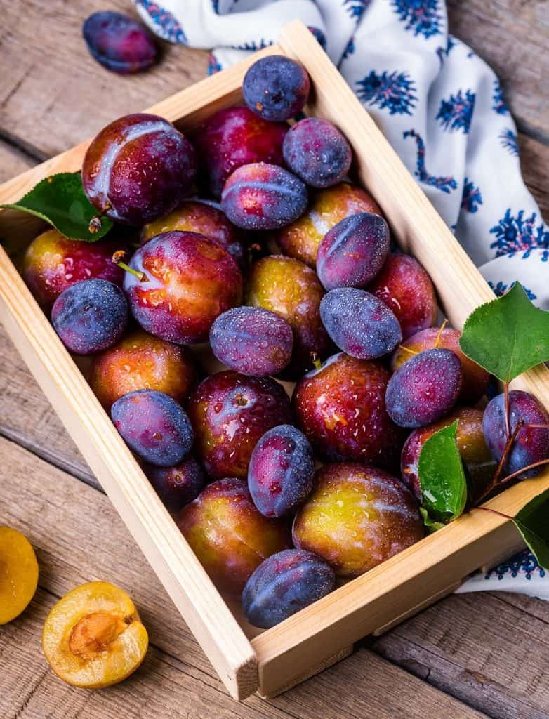 beginning gardener fruit basket plums