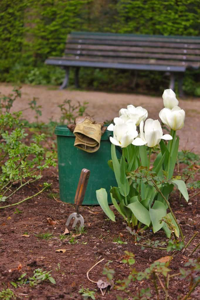 beginning gardener tools
