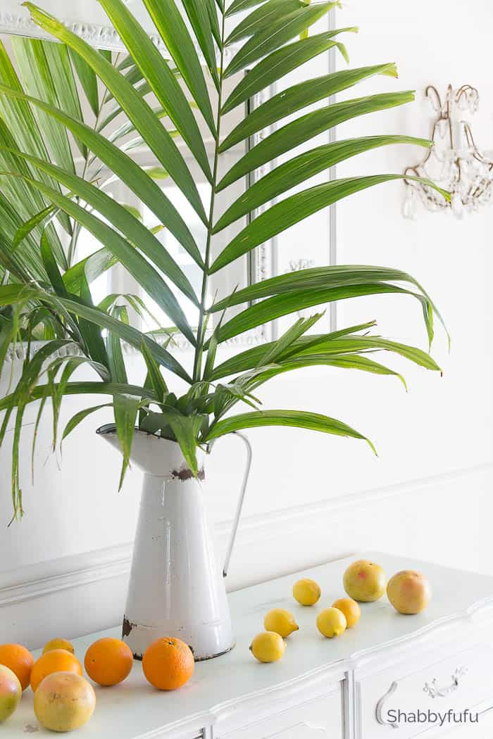 palm tree leave decorating