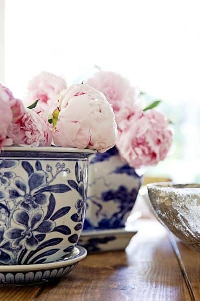 orchid pots peonies