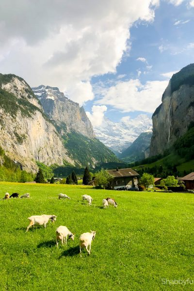 Natural Beauty of Switzerland