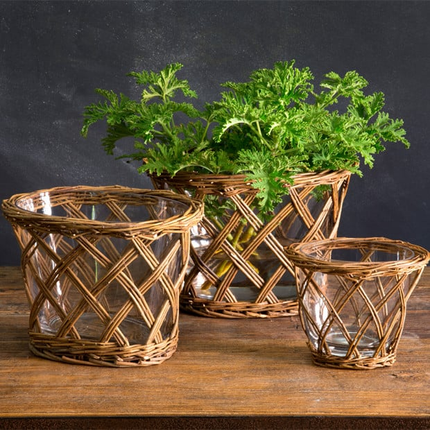 willow planter vases