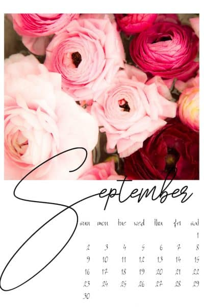 Home Style Saturdays 102 | Fall Recipes | DIY | Shopping