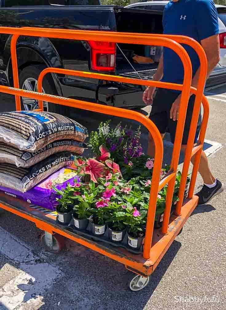 shopping the Home Depot for garden supplies