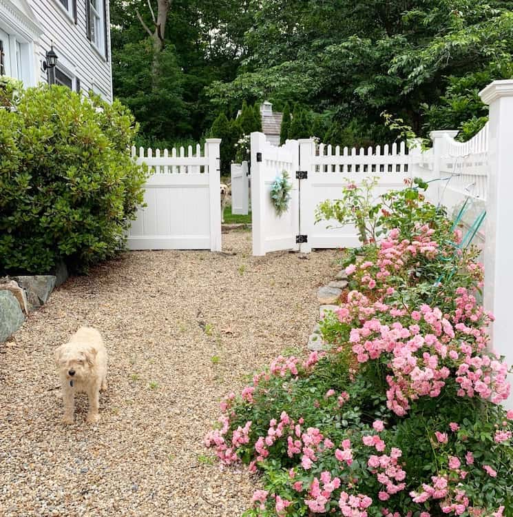 french country home tour garden gate