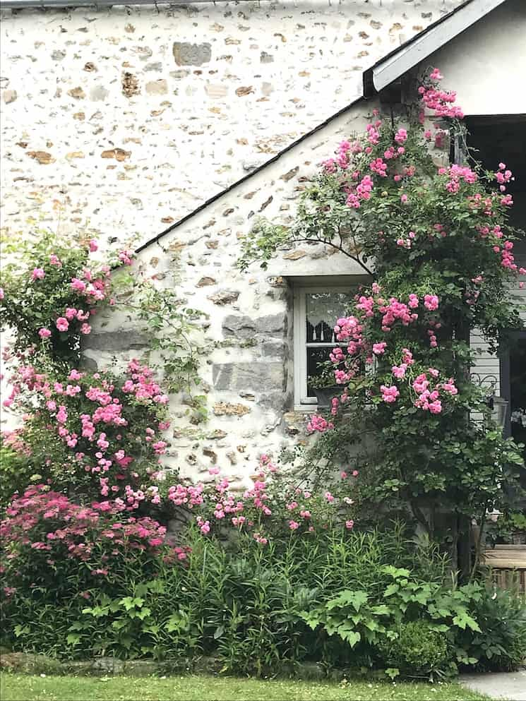 French farmhouse decor rose garden wall