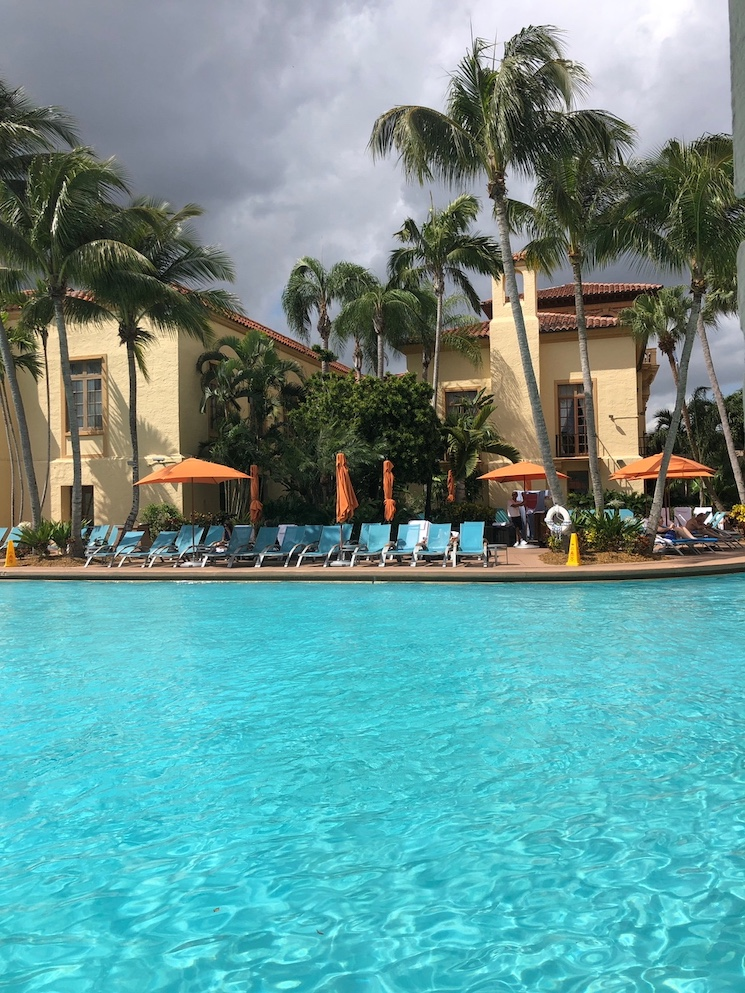 the biltmore hotel pool coral gables