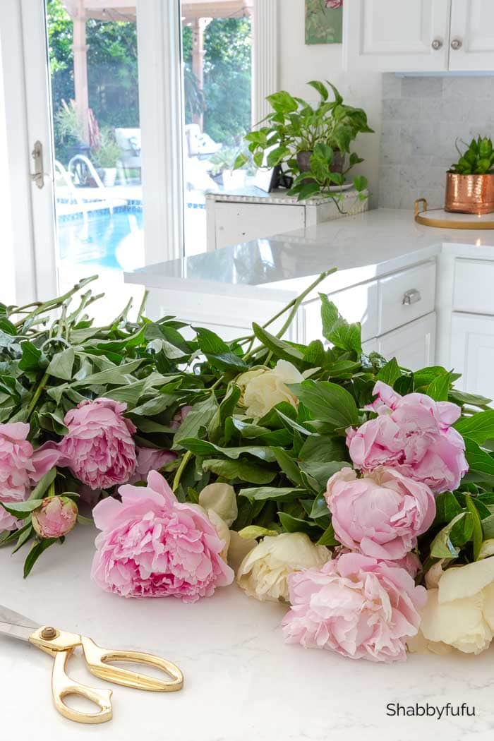 the art of arranging peonies