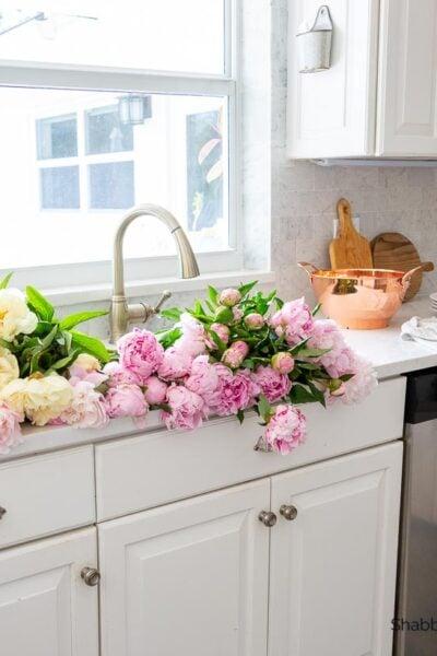soaking peonies in the sink