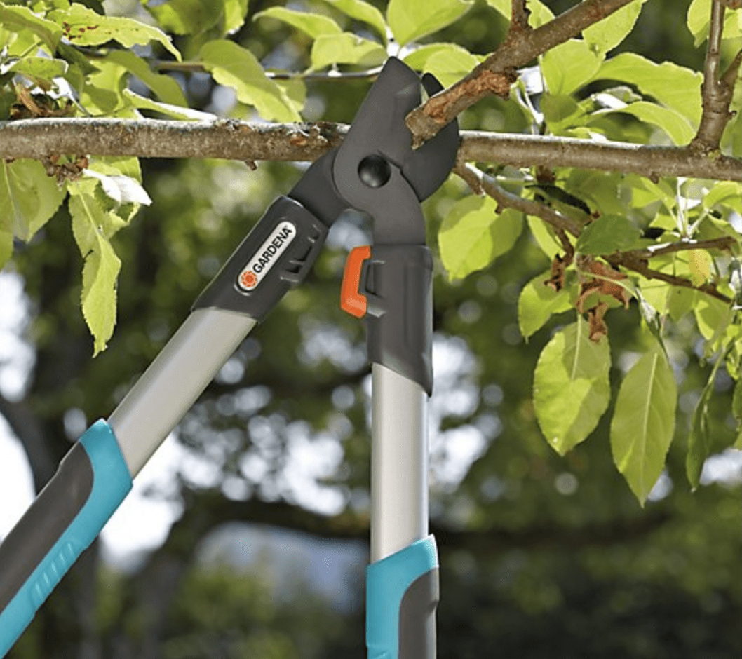 essential garden tools lopper