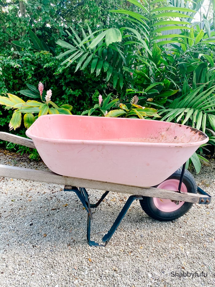 common gardening tools - pink wheelbarrow